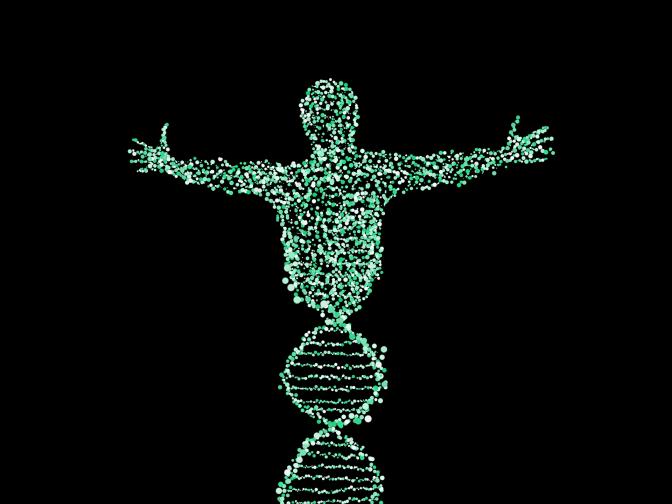 CIUCIUBABKA U SEDNA DNA